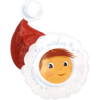 Santa Hat product link