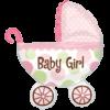 Baby Girl Buggy product link