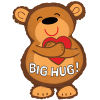 Cute Big Hug Bear product link