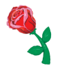 Rose Flower product link