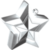 Silver 3D Star Weight product link
