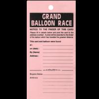Balloon Race Tickets x 100