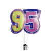 Big 95th Birthday Numbers product link