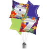 97th Pillow Birthday product link