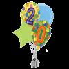 20 Balloon Birthday product link