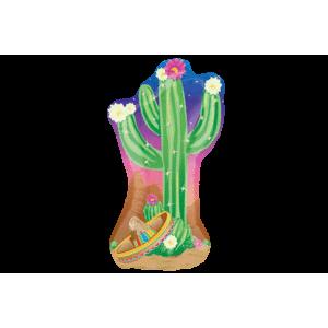 Mexican Cactus Balloon in a Box