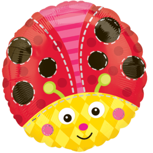 Ladybird Balloon in a Box