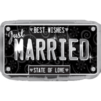 Just Married Plate Balloon in a Box