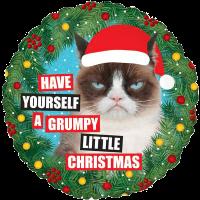 Grumpy Cat® Christmas Balloon in a Box