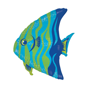 Vibrant Angel Fish Balloon in a Box