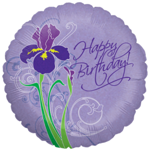 Iris Happy Birthday  Balloon in a Box