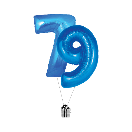 Blue 79 Big Numbers