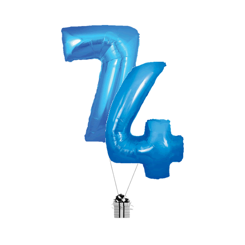 Blue 74 Big Numbers