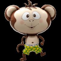 Birthday Cheeky Monkey Balloon in a Box