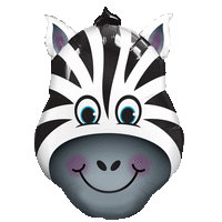 Giant Zebra Balloon in a Box