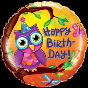 Birthday Owl Balloon in a Box