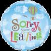 Sorry Single Balloon Category