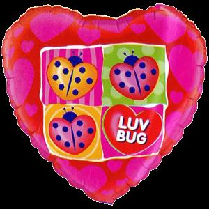 Love Bug Ladybird Balloon in a Box